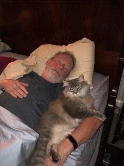 homem dormindo com gato