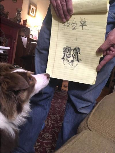 homem mostra desenho para cachorro