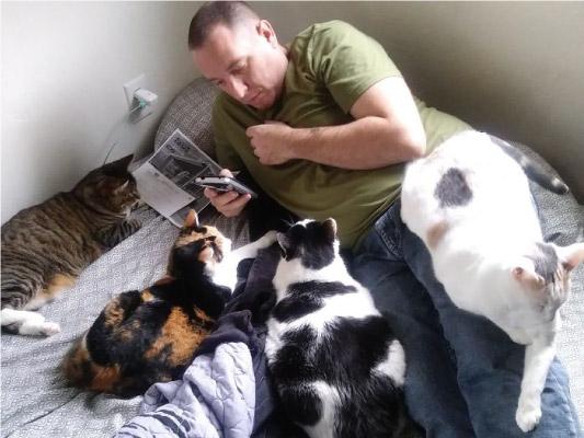 homem lendo para vários gatos