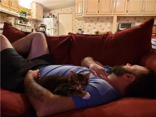 homem dormindo no sofá com gato do lado