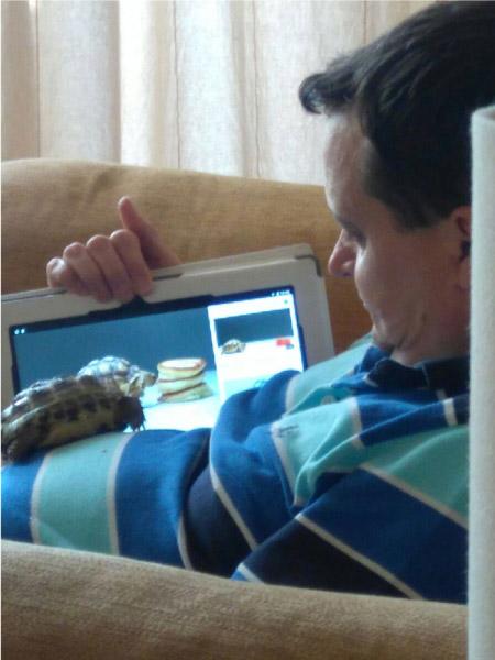 homem mostrando filme para tartaruga
