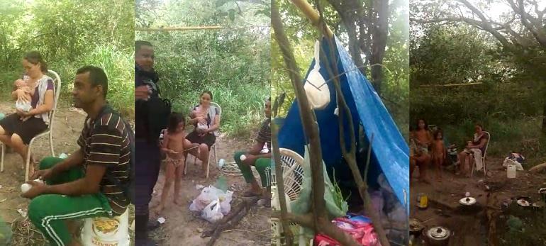 Mix de imagens mostrando família vivendo em matagal em barraca de lona improvisada