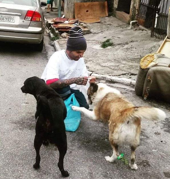 jovem dando ração cães rua