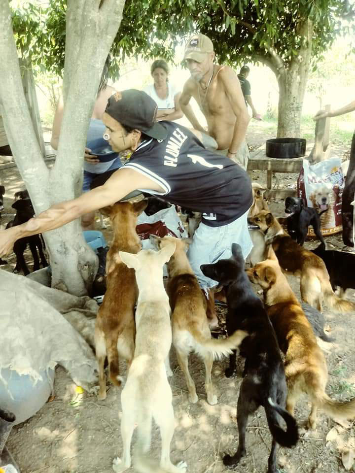 jovem cercado cães de rua moradores de rua
