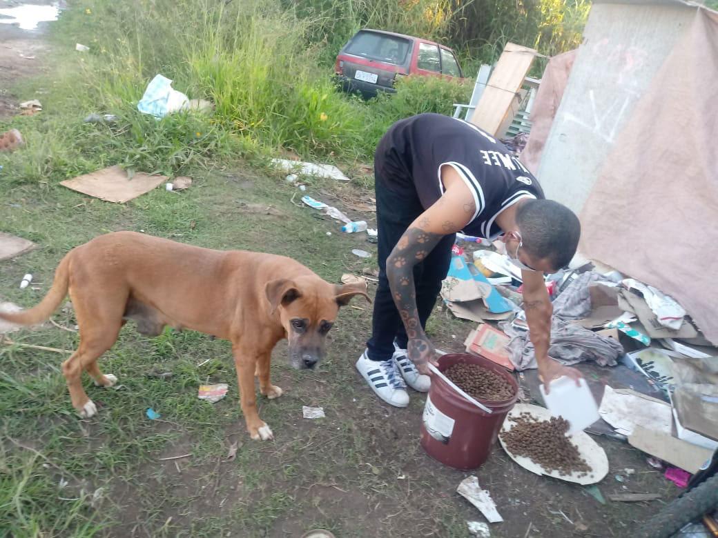 jovem dando ração cachorro rua