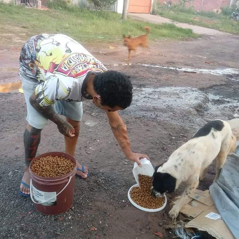 jovem colocando ração prato cachorro rua