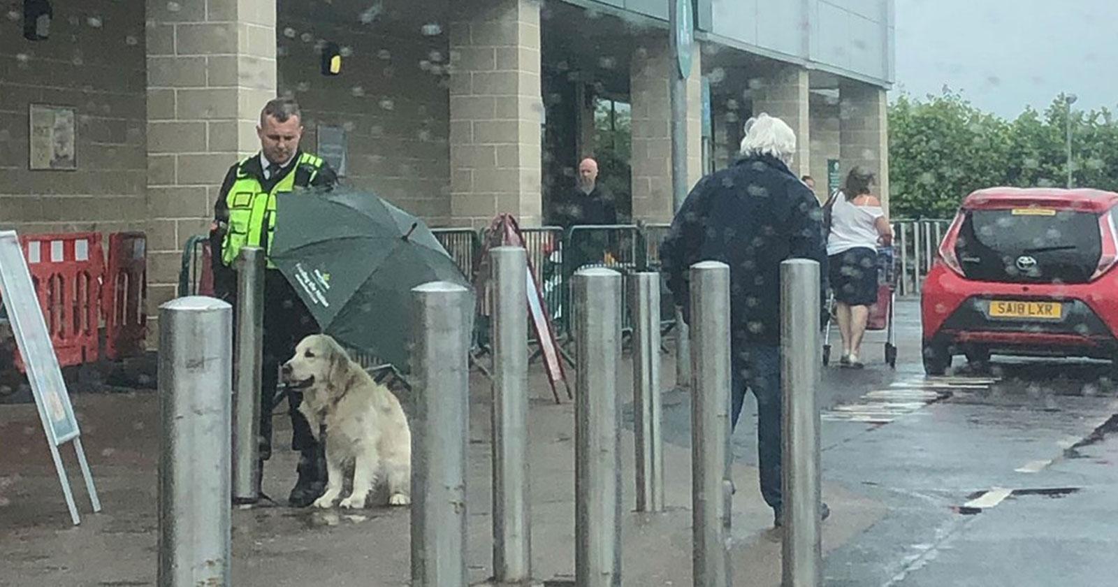 segurança supermercado protege cachorro guarda-chuva