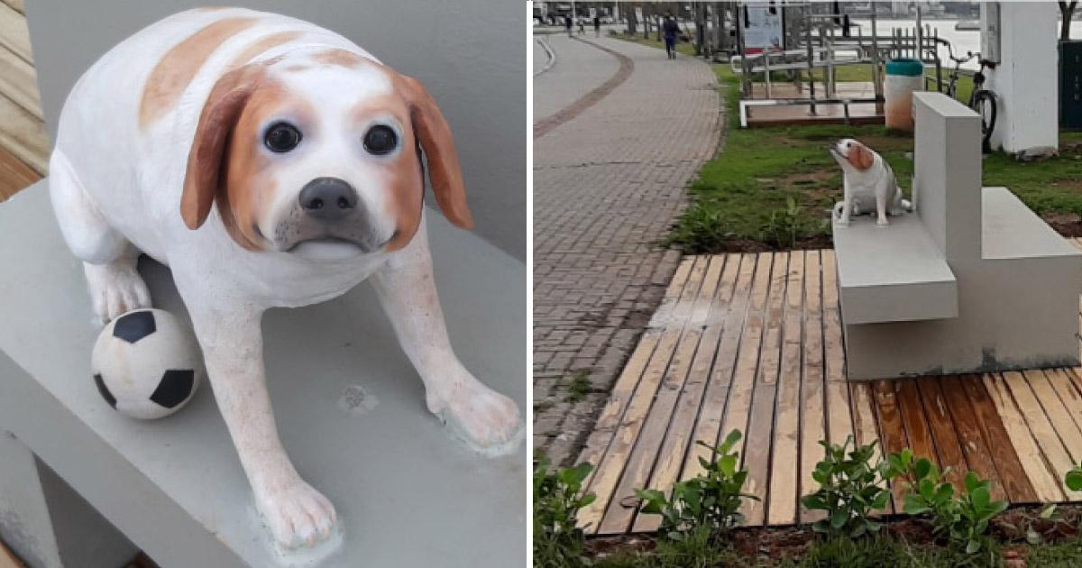 Primeira escultura brasileira em homenagem a um cãozinho é inaugurada em Floripa (SC) 1