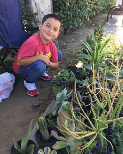 Aaron cuidando das plantas