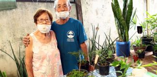 idosos floristas