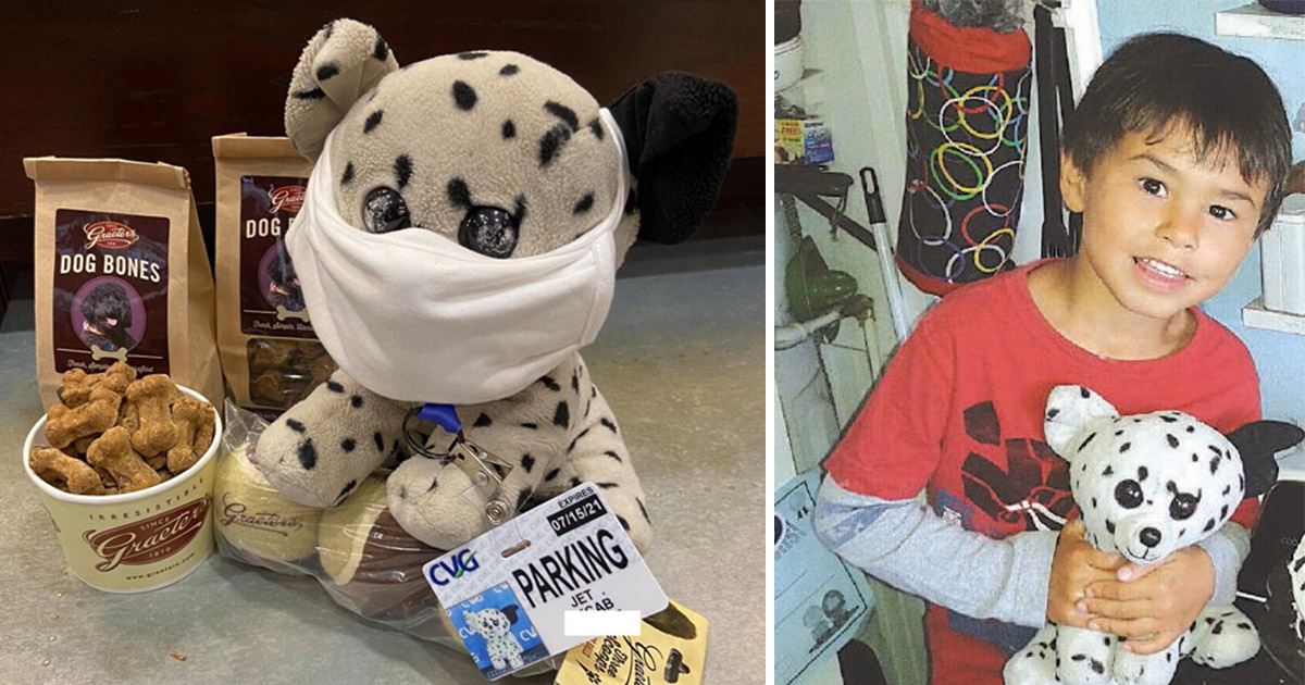 Aeroporto nos EUA cria campanha cheia de fofura para encontrar dono de cachorro de pelúcia perdido 1