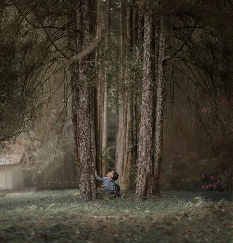 menino sentado grama tocando árvore