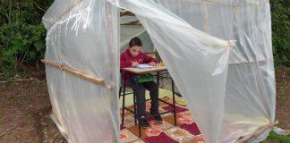 menino estuda barraca lavoura