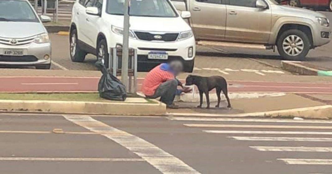 Generosidade: homem em situação de rua ganha marmita e a divide com cachorro 2