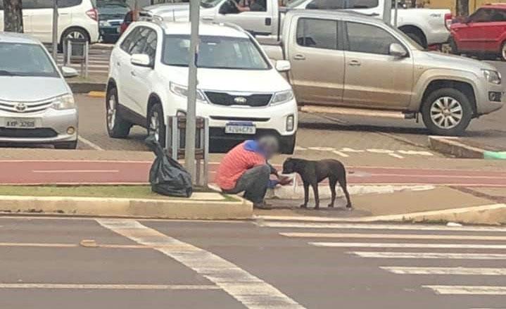 morador rua divide marmita cachorro