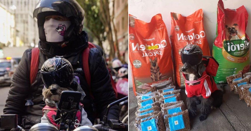 motoboy em cima moto cadelinha