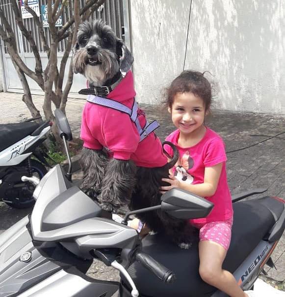 cadela em cima moto junto com menina