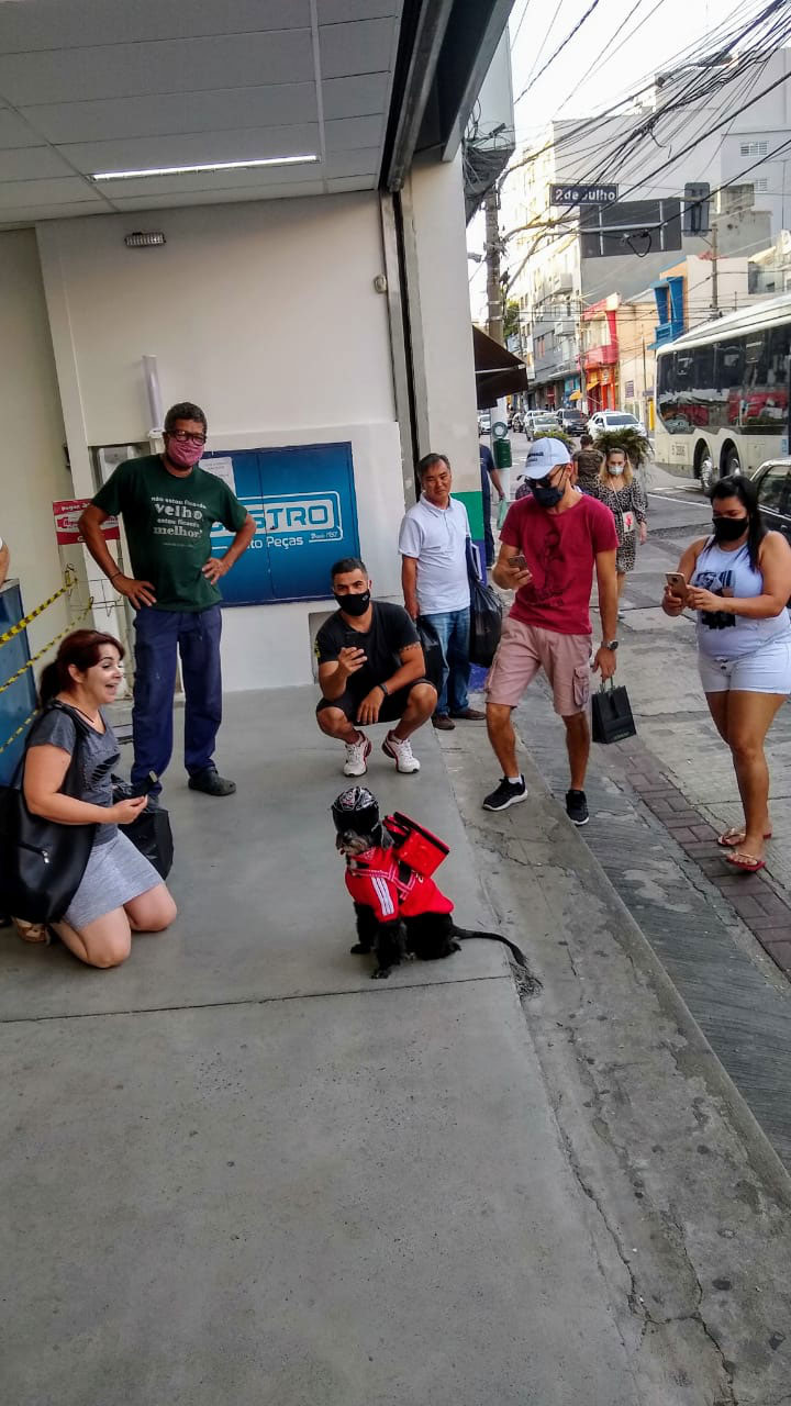 pessoas tirando foto cadelinha vestida entregador aplicativo
