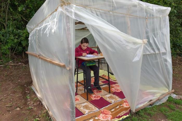 menino estuda sala aula montada lavoura soja