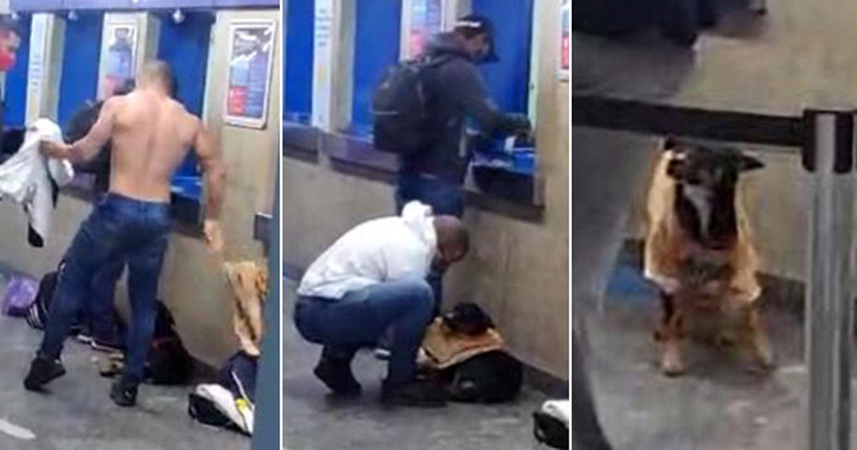 Rapaz tira a própria camiseta para aquecer cãozinho que tremia de frio em SP; vídeo 1