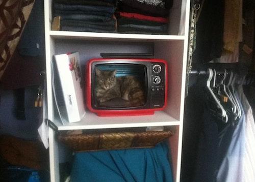 tutorial tv vintage em casinha de gato 5