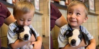 menino adota cachorro com lábio leporino