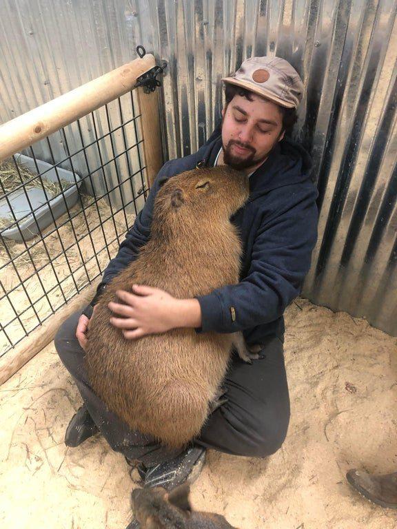 homem abraçando animal