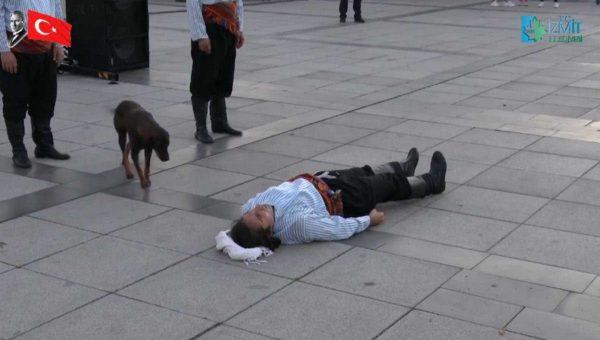 cachorro vê homem deitado no chão