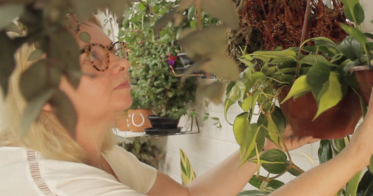 """Ex-secretária executiva pede demissão para abrir floricultura inspirada no jardim da avó: """"Sensação de paz"""" 1"""