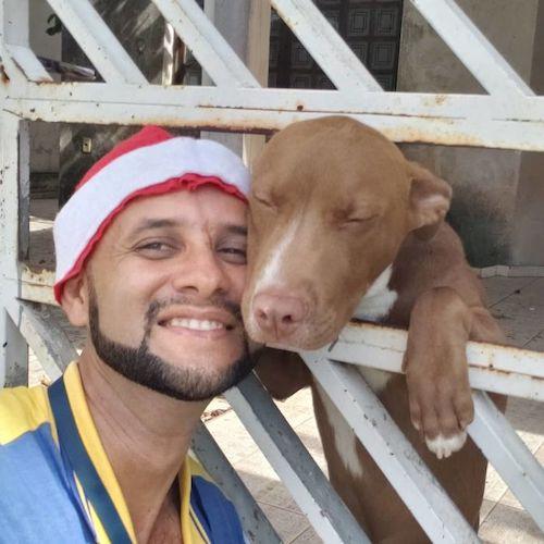 carteiro selfies com os animais 2