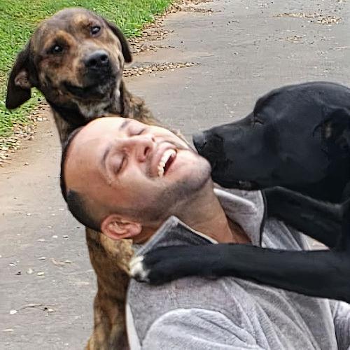 carteiro selfies com os animais 5
