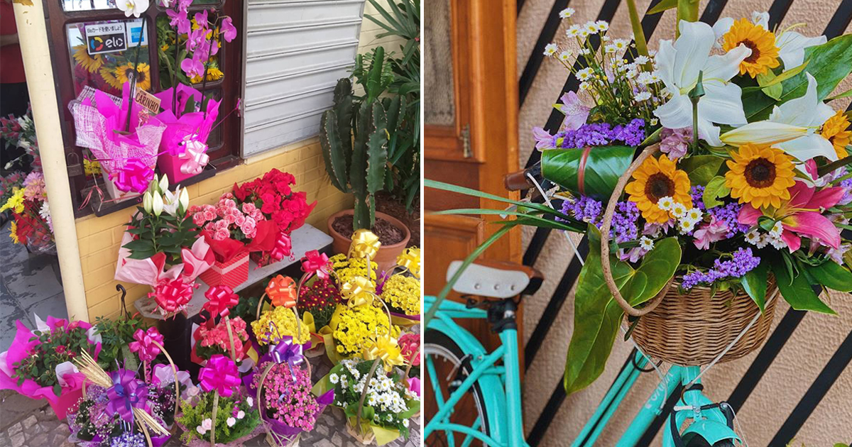 Mapa da Felicidade: 24 floriculturas de SP para conhecer e incentivar o comércio local 1