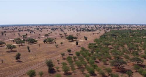 grande muralha verde africa 5