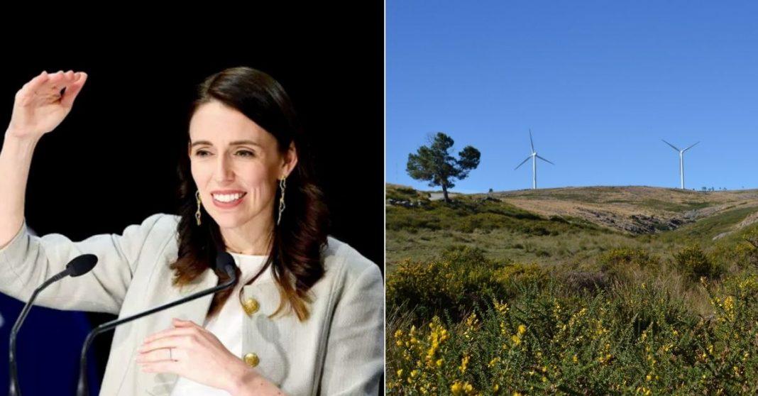 primeira ministra nova zelandia energia renovavel