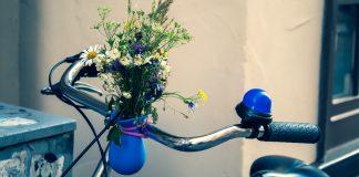 ramo flores guidão bicicleta
