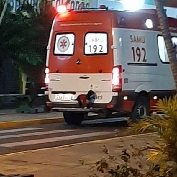cadelinha na ambulância