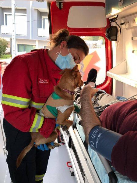 bombeira segurando cão
