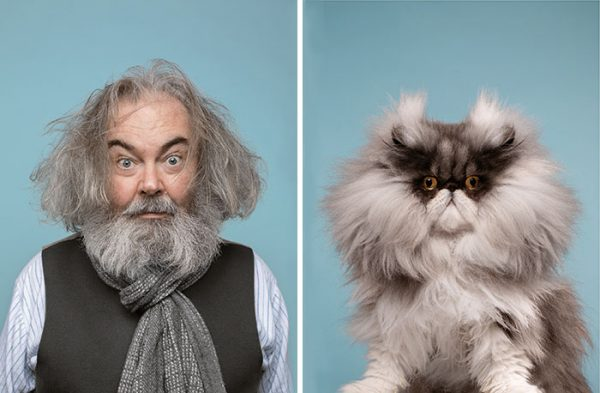 gatos e sósias humanos