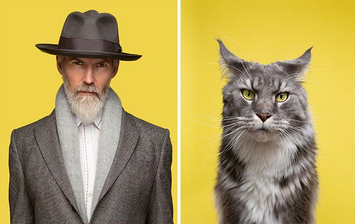 Fotógrafo cria coletânea incrível com fotos de gatos e seus sósias humanos 3