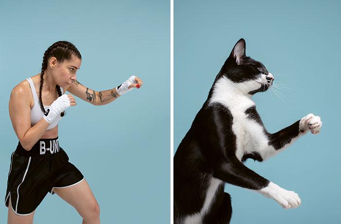 Fotógrafo cria coletânea incrível com fotos de gatos e seus sósias humanos 6