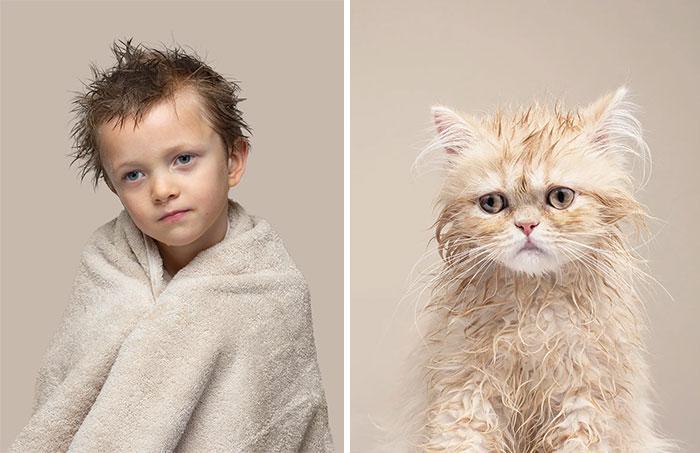 Fotógrafo cria coletânea incrível com fotos de gatos e seus sósias humanos 9