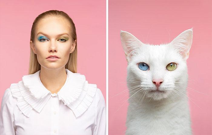 Fotógrafo cria coletânea incrível com fotos de gatos e seus sósias humanos 10
