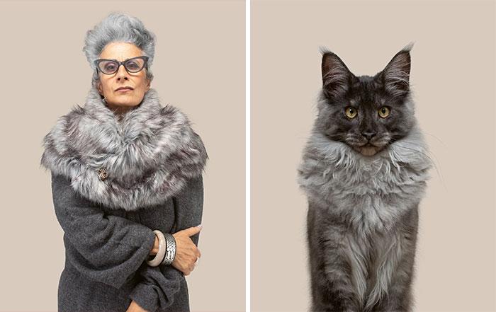 Fotógrafo cria coletânea incrível com fotos de gatos e seus sósias humanos 11