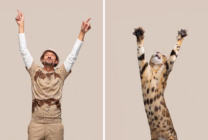 Fotógrafo cria coletânea incrível com fotos de gatos e seus sósias humanos 12