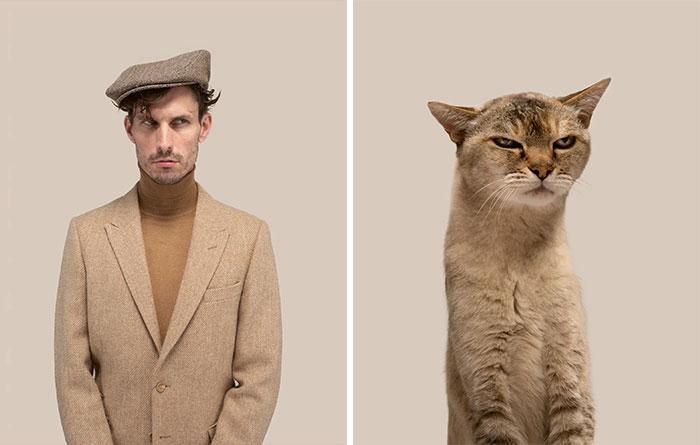 Fotógrafo cria coletânea incrível com fotos de gatos e seus sósias humanos 14