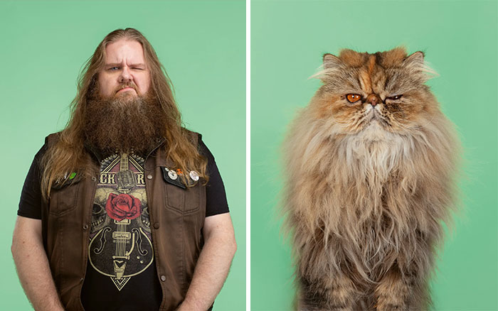 Fotógrafo cria coletânea incrível com fotos de gatos e seus sósias humanos 15