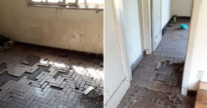 Veja como ficou casa de idoso que vivia em condições insalubres, após vizinhas realizarem vaquinha 2
