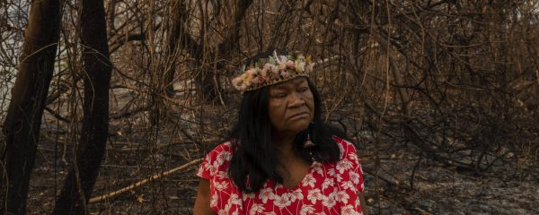 indigena na mata
