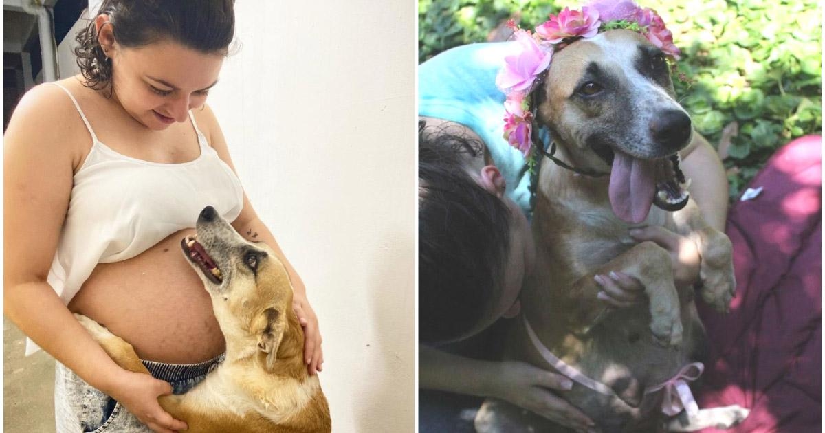 Isa recebe carinho de cachorrinha de estimação