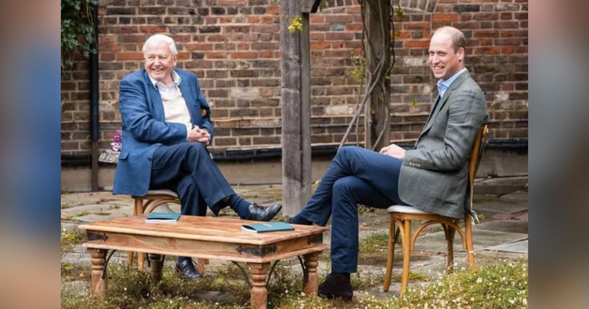 Príncipe William cria prêmio ambiental